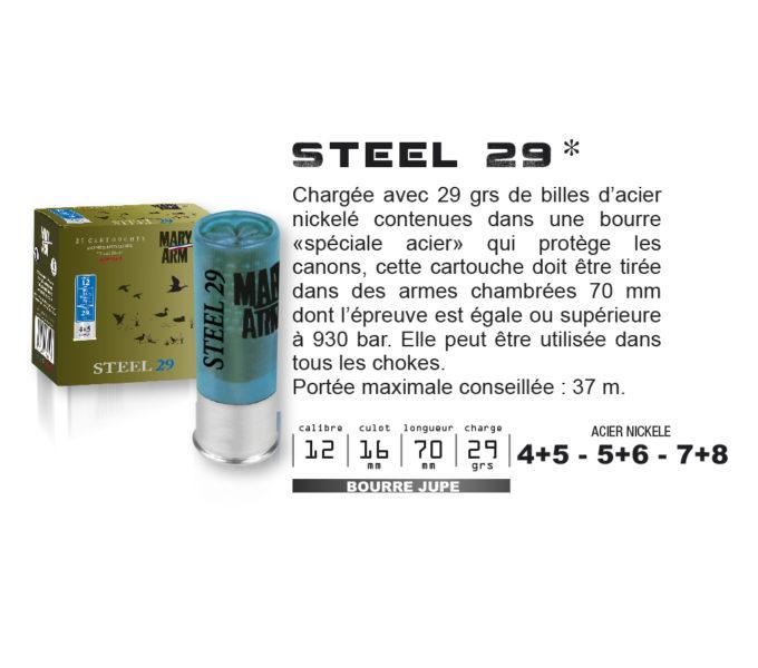 STEEL Nickelé 29